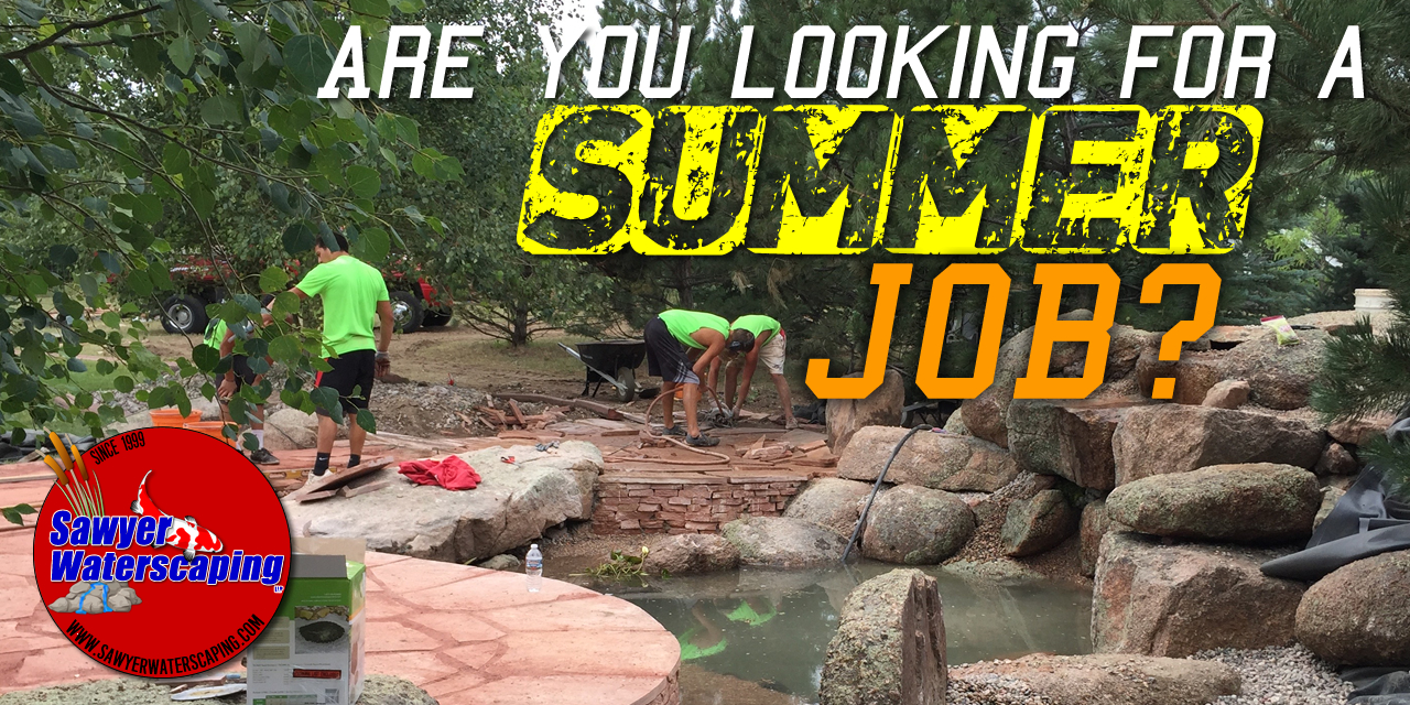 Summer Job Employment